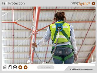 SafetyBytes® - Fall Prevention (Full Body Harness)