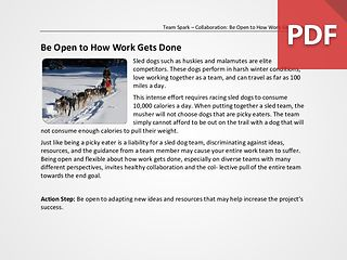 Team Spark: Be Open to How Work Gets Done