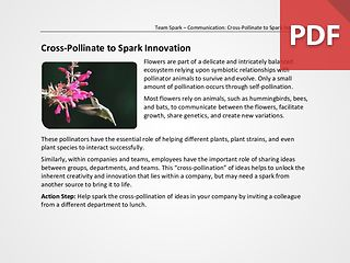 Team Spark: Cross-Pollinate to Spark Innovation