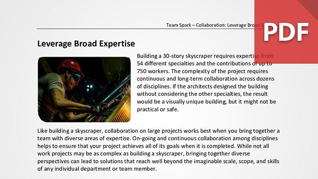 Team Spark: Leverage Broad Expertise