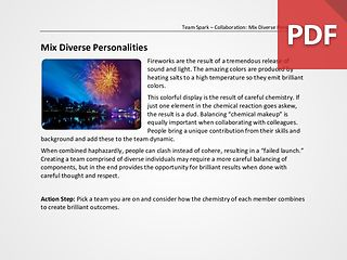 Team Spark: Mix Diverse Personalities