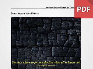Team Spark: Proverb - Don't Waste Your Efforts