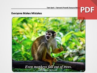 Team Spark: Proverb - Everyone Makes Mistakes