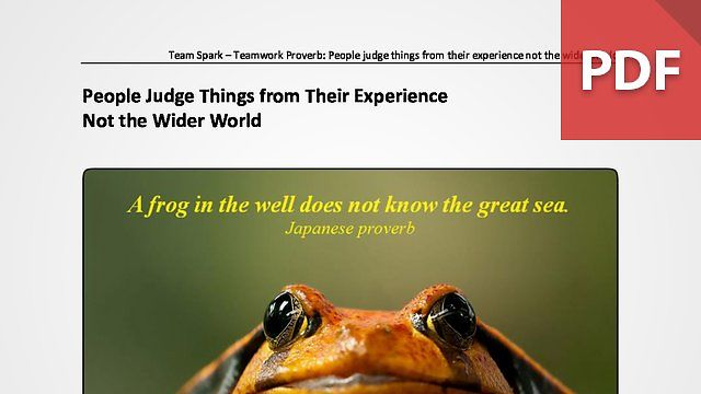Team Spark: Proverb - People Judge Things from Their Experience Not the Wider World