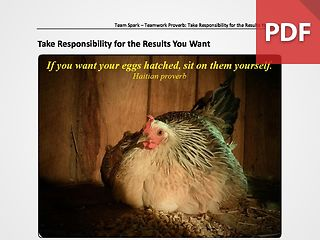 Team Spark: Proverb - Take Responsibility For The Results