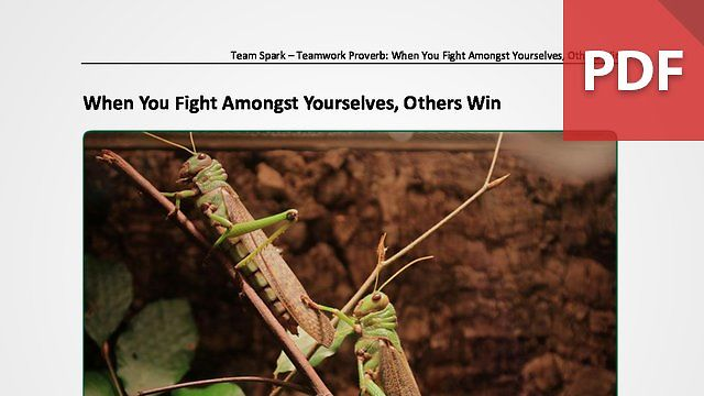 Team Spark: Proverb - When You Fight Amongst Yourselves, Others Win