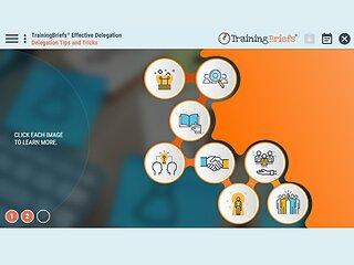 TrainingBriefs® Effective Delegation