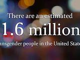 Transgender Transition Is...™