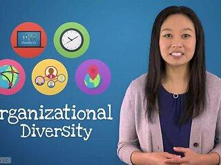 Diversity 101™ Merge Ahead
