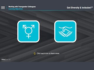 Got Diversity & Inclusion?™ Working with Transgender Colleagues (For Employees)