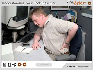 SafetyBytes® - Structure of the Back