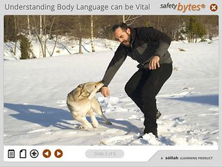 SafetyBytes® - Understanding a Dog's Body Language
