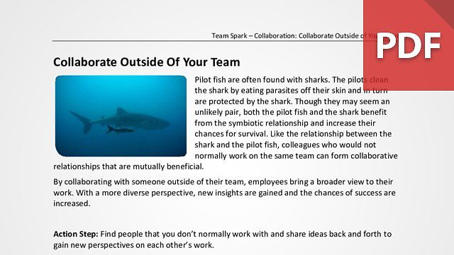 Team Spark: Collaborate Outside Of Your Team