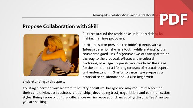 Team Spark: Collaboration with Skill