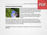 Team Spark: Cultivate a Collective Instinct