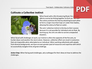 Team Spark: Cultivate a Collective Instinct