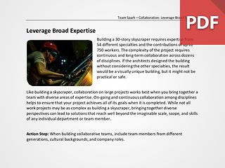 Team Spark: Leverage Broad Expertise
