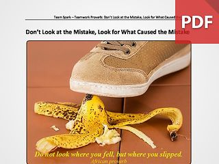 Team Spark: Proverb - Don't Look at the Mistake