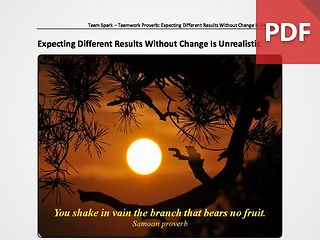 Team Spark: Proverb - Expecting Different Results Without Change Is Unrealistic
