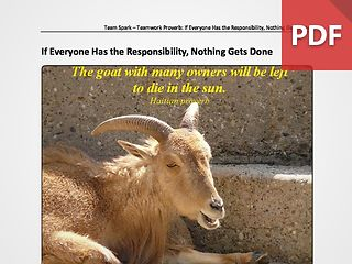 Team Spark: Proverb - If Everyone Has The Responsibility; Nothing Gets Done