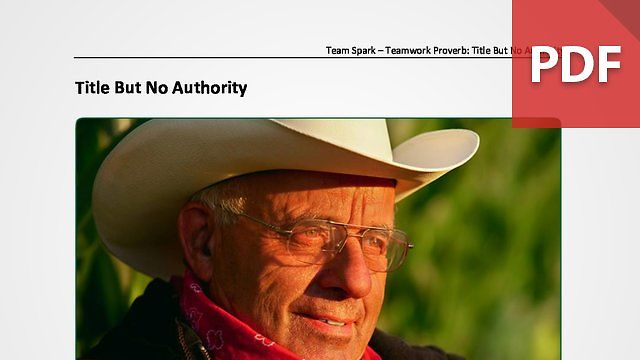 Team Spark: Proverb - Title But No Authority