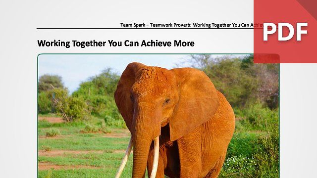 Team Spark: Proverb - Working Together You Can Achieve More