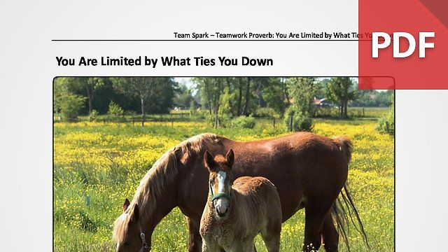 Team Spark: Proverb - You Are Limited by What Ties You Down