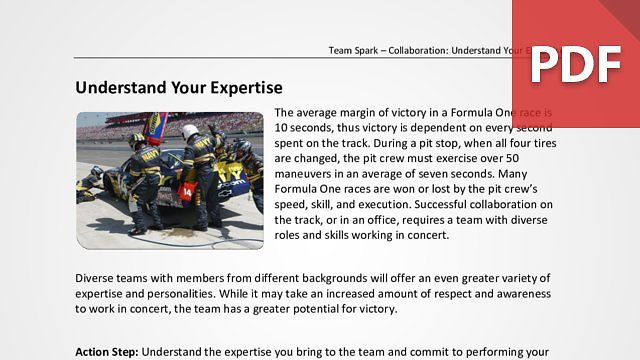 Team Spark: Understand Your Expertise