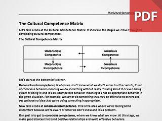 The Cultural Competence Matrix