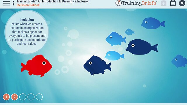 TrainingBriefs® An Introduction to Diversity & Inclusion