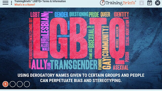 TrainingBriefs® LGBTQ+ Terms & Information