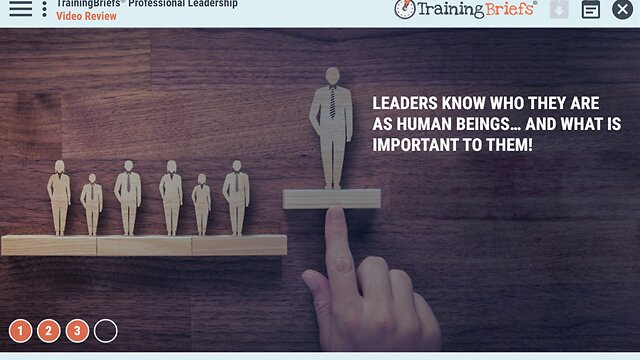 TrainingBriefs® Professional Leadership