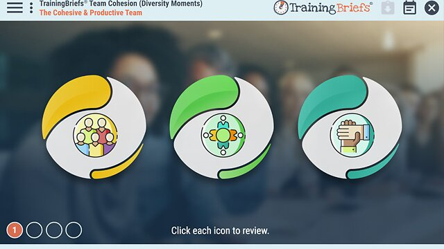 TrainingBriefs® Team Cohesion (Diversity Moments)